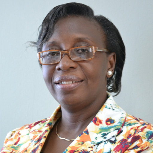 IPCC Select Dr. Ibidun Adelekan for Sixth Assessment Report Authorship